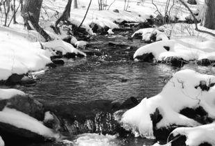 Fahnestock Brook