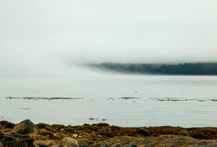 Fog over the inlet