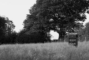 Box in the field.