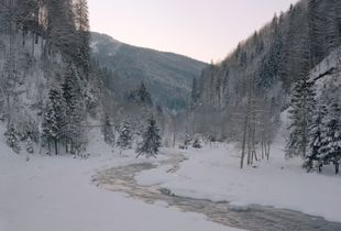 Targului River, proposed location for Beaver reintroduction programme.