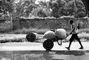 Charcoal carrier