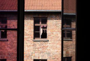 Auschwitz Window View No. 6