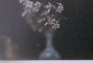 Vase through window