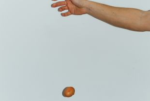 Egg Falling