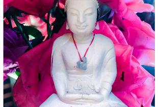 Buddha of Grace