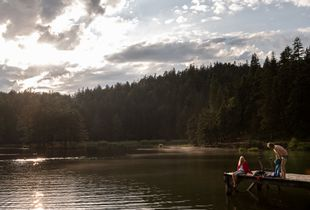 Lake Seefeld Light
