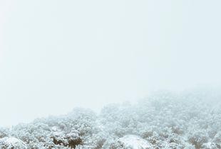 Trasposizione D'Inverno 1