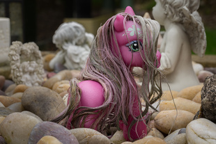 Pink pony.