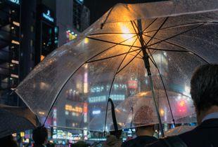 Tokyo sous la pluie