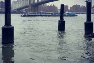Barge under Brooklyn Bridge