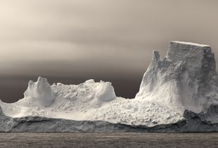 Antarctic Armada