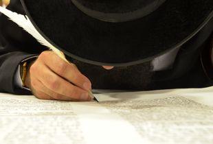 Le nez du Scribe