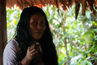 Rainforest Shaman