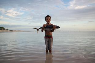Impact of overfishing #01