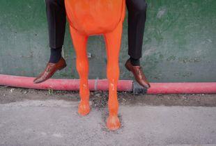 dead horse riding