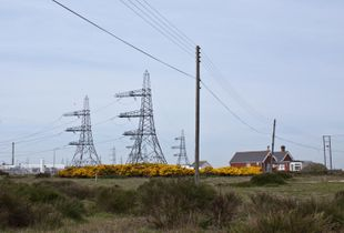 Cottages at Dungeness