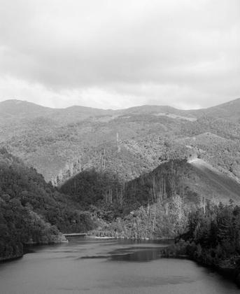 Maitai Dam, 2019