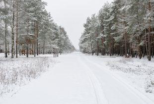 'The Boulevard', Stalag Left III, Źagań, Poland - January 2015
