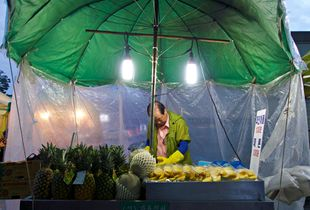 Pineapplea and melons seller