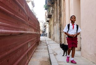 School boy and a dog