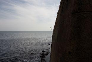 El Salto. / The Jump.