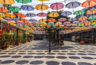 Les parapluies de Xi'An