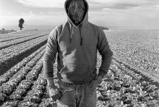 Essential Field Worker, from the series De la Luz