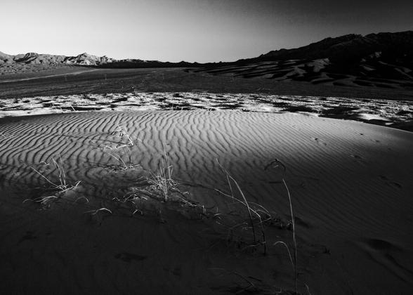 Desert Dune at Dusk