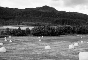 Blank Hay Bales (Norway)