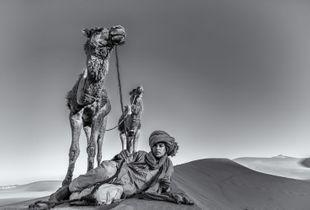 Sahara Swag
