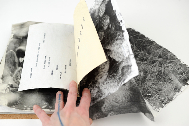 Trail of Touch Book