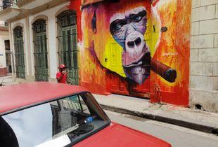 Habana Red