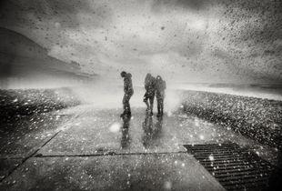 Brighton Storms