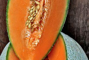 Melone Modigliani