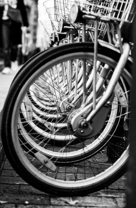 Biciclette, ladri di ...