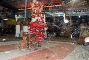 Dancing Coconut