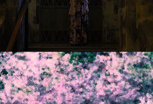 Japan Dress 希望