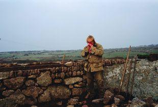 Simon Berryman, Cornish Hedger.