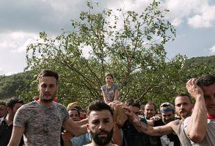 Matrimonio degli alberi - Trasporto della Cima
