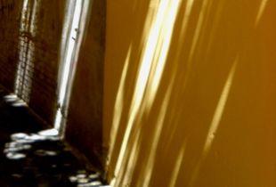Foschia di colore#4