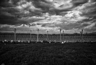 """Macedonia Greece Border / inside the refugees camp 2016 """