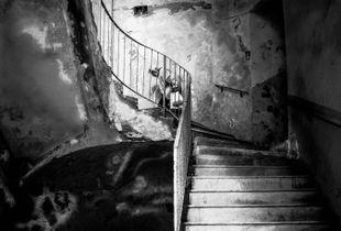 I fantasmi di Napoli