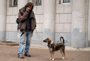 On the Kiev's streets
