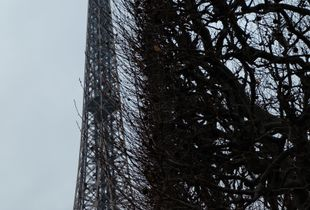 Eiffel friends