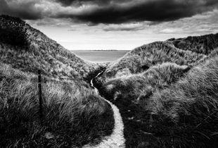 Scotlandscape #2
