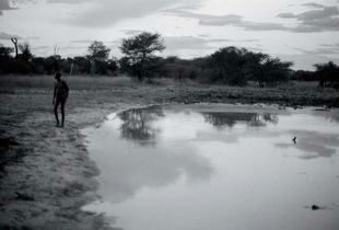 DUSK FALLING IN THE BUSH, NAMIBIA 2009
