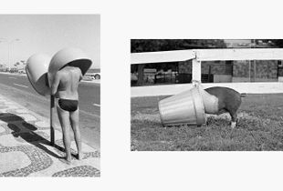 Man on Telephone, Brazil, 1975 | Pig in the Pail, NY, 1970