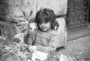 La bambina e le mimose