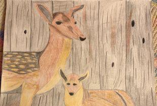 Mother Deer and Baby Deer