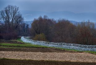 Freshly built anti-refugee barbed wire on the Slovenia-Croatia border town of Dobova is a menacing sight for refugees.